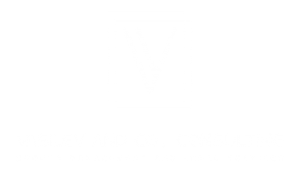 Vasilev & Co. Consulting